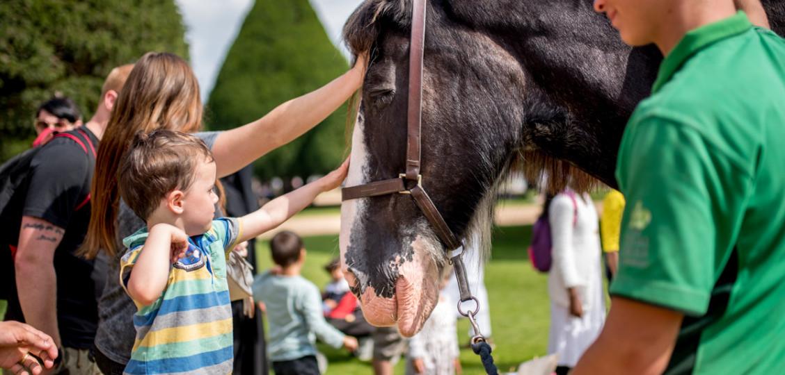 Family Fun at Hampton Court Palace 2021