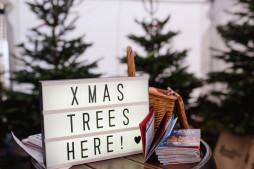 Xmas tree sign